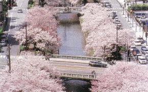 高空的松川