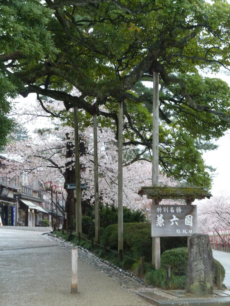 金澤市:日本三名園之一兼六園(Kenrokuen) 2013/04/12 (3/6)