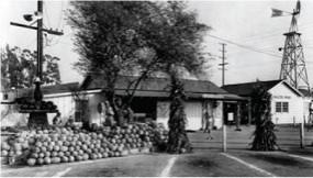 image1934