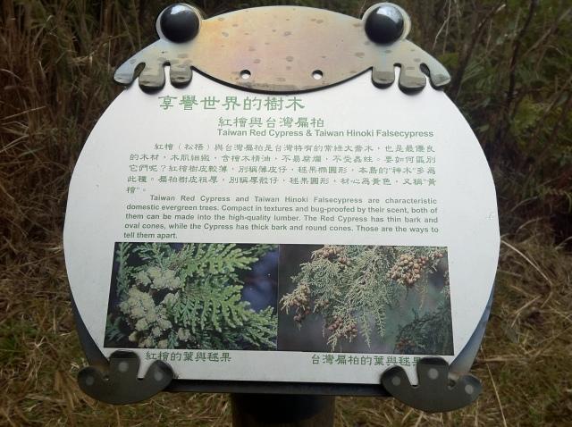 956-太平山 062