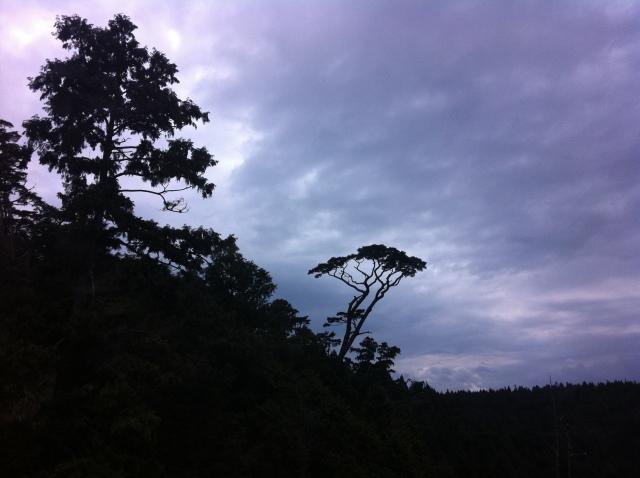 956-太平山 163
