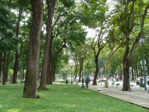 HCMC 037