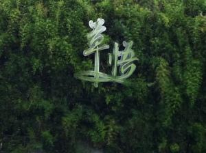 taichung 144